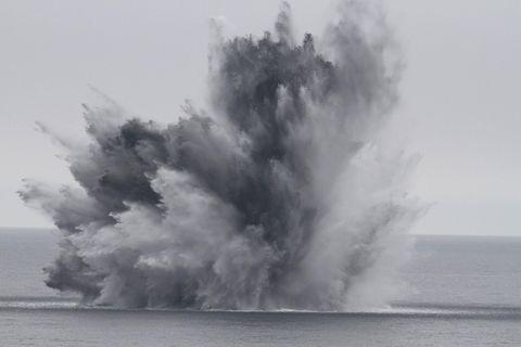 Sprengungen von Munitionsaltlasten können für Schweinswale tödlich enden