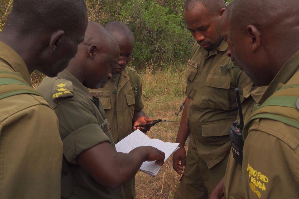 144 hoch qualifizierte und erfahrene Nashorn-Ranger mussten entlassen werden