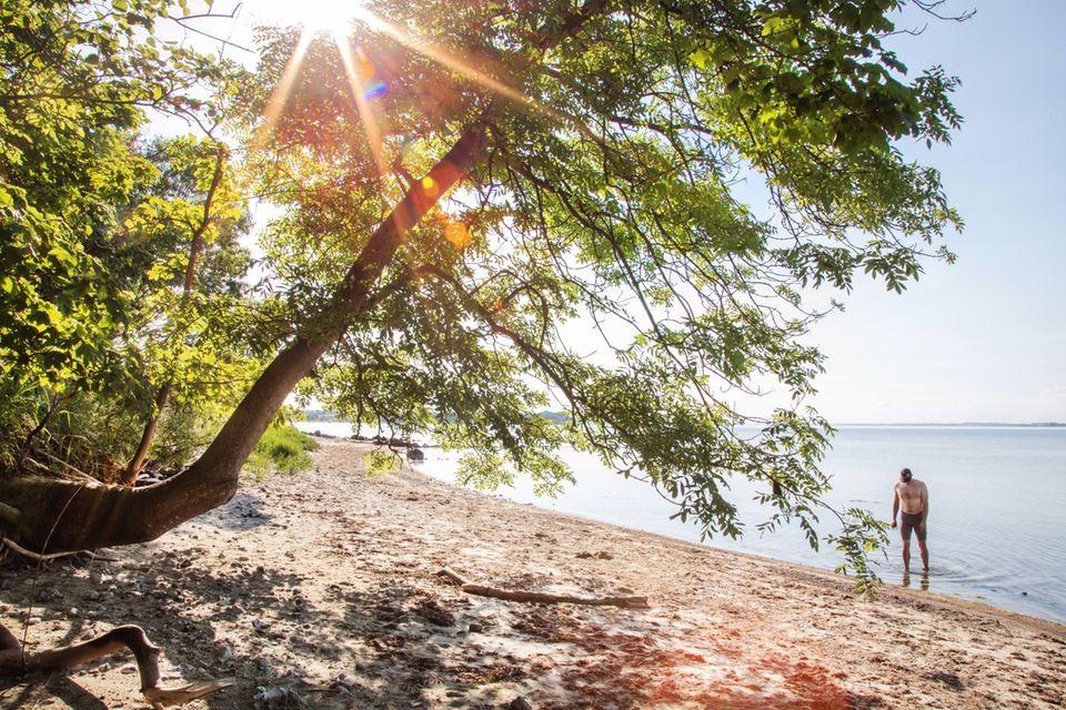 """Eine sehr, kleine Straße führt zum Parkplatz am Na de Huk. Hier können nur eine Handvoll Autos stehen, was den möglichen Besucherandrang trotz der Nähe zum Wasser stark einschränkt. Vom Parkplatz aus landet man direkt am Strand, der sich zur Rechten als langes Band am Fördeufer zeigt. Der recht feinsandige Strand zeigt am Spülsaum eventuell einen Mantel aus Algen. Im Wasser selbst treffen die Füße auf kiesige Flächen, sodass Badschuhe sinnvoll sind. Ein paar Meter weiter draußen ist das Wasser extrem klar und perfekt geeignet für längeres Schwimmen. Stand-up-Paddler und Kajaker haben die Möglichkeit, auch die Halbinsel selbst zu erkunden, was wegen der Findlingsansammlung am Ufer zu Fuß extrem mühselig wäre. An der Spitze der Halbinsel hat man als Wassersportler das Privileg, im superklaren Wasser Einblick in die Unterwasserwelt zu bekommen, die hier wegen der bis zu autogroßen Findlinge am Fördeboden äußerst interessant ist.  Als Einrichtung finden wir am Parkplatz nur ein Trockenklosett. Wenn sich der Hunger meldet, stößt man am anderen Ende des Strandes beim Campingplatz auf das Restaurant """"Zum Schwarzen Raben""""."""