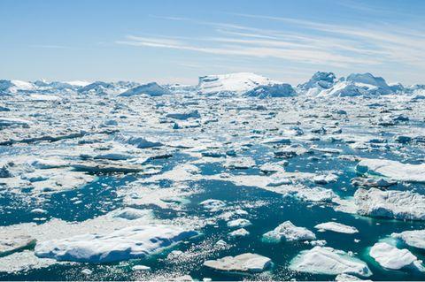 Abschmelzende Gletscher in Grönland erhöhen nicht nur den Meeresspiegel, sondern setzen auch große Mengen an Quecksilber frei. Das zeigt eine jüngst veröffentlichte Studie