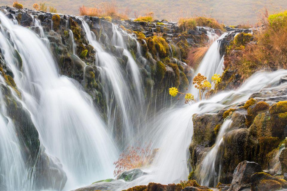 """28.05.2021      """"Einer meiner Lieblingswasserfälle auf Island, der Bruarfoss.""""  Kamera:Olympus E-M5 MarkII"""