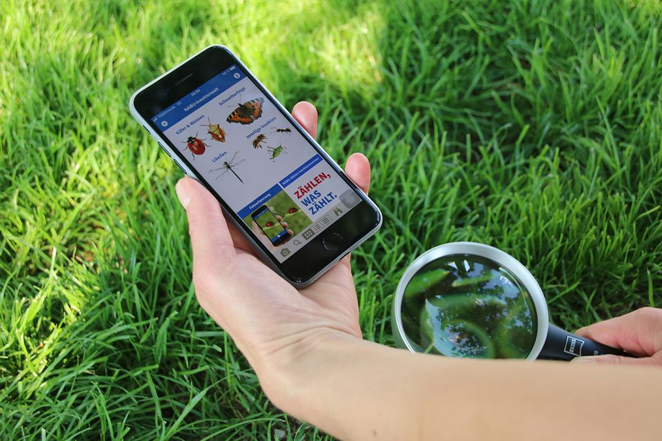 "Nabu-App ""Insektenwelt"""