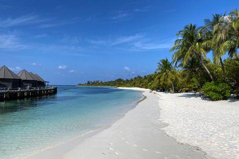 Die Malediven wollen 16 unbewohnte Inseln verpachten. Wer eine von ihnen ersteigert, muss darauf ein Hotel bauen