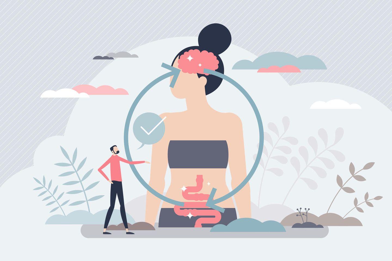 Unser Darm sendet über Nervenstränge und Botenstoffe ständig Signale an unser Denkorgan – und beeinflusst unser Befinden wie auch unsere Entscheidungen