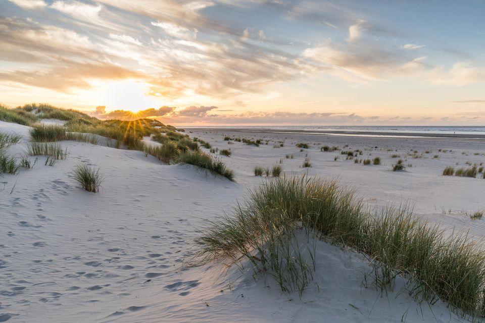 Strand mit Dünen und Dünengras auf Baltrum