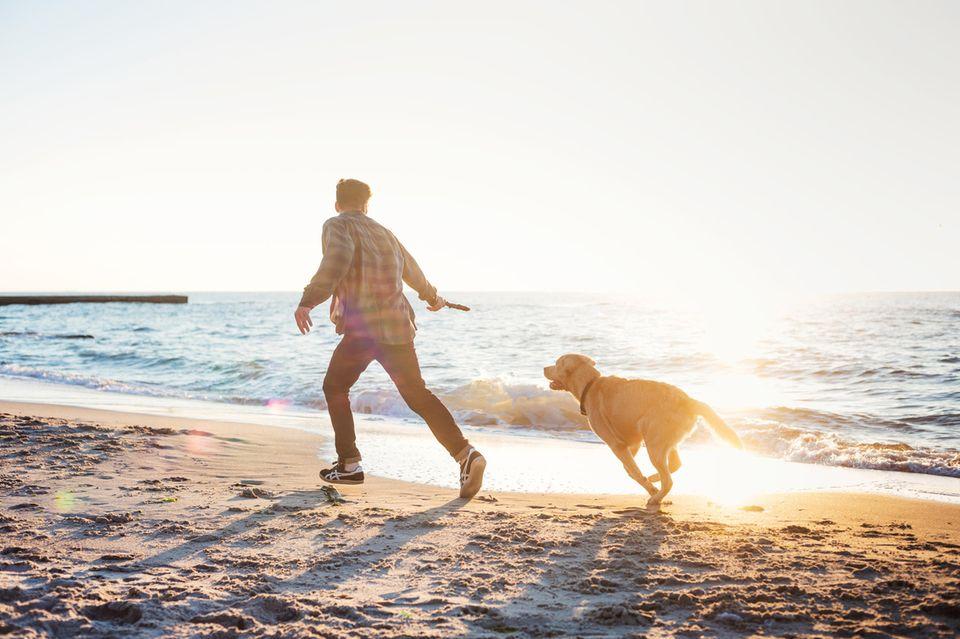Mann läuft mit Hund bei Sonnenaufgang am Strand entlang
