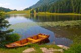 Blick auf den Seewaldsee