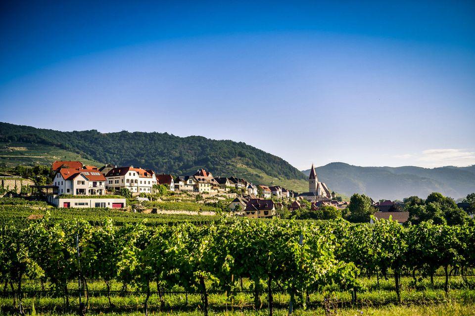 Landschaften der Wachau