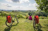 Zwei Fahrräder stehen auf einer Wiese