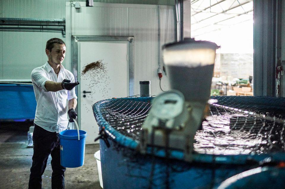 Lukas Normann in der Anlage der Fischzucht