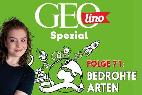 In Folge 71 unseres GEOlino-Podcasts geht's um Bedrohte Arten