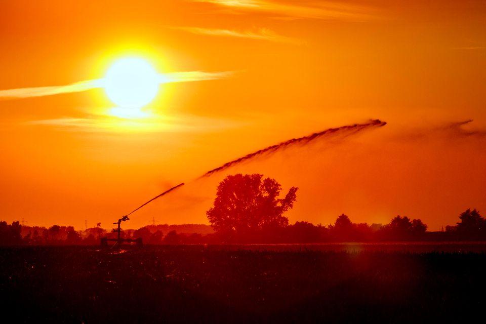 Risikoanalyse zum Klimawandel: Atembeschwerden, Ernteausfälle, Hochwasser: Da kommt was auf uns zu!