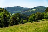 Blick auf die Landschaft vom Langenberg bei Niedersfeld