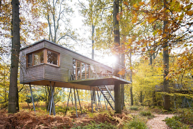Baumhaus im Wald in Deutschland