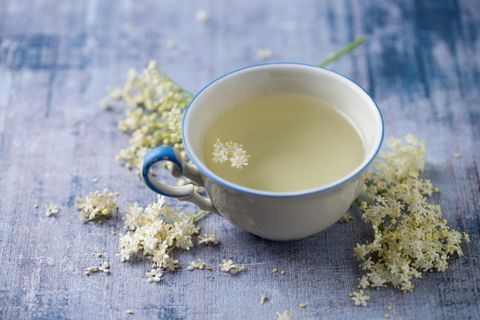 Heilmittel zum Trinken: Wohltat aus der Natur: So hilft Tee uns, gesund zu bleiben