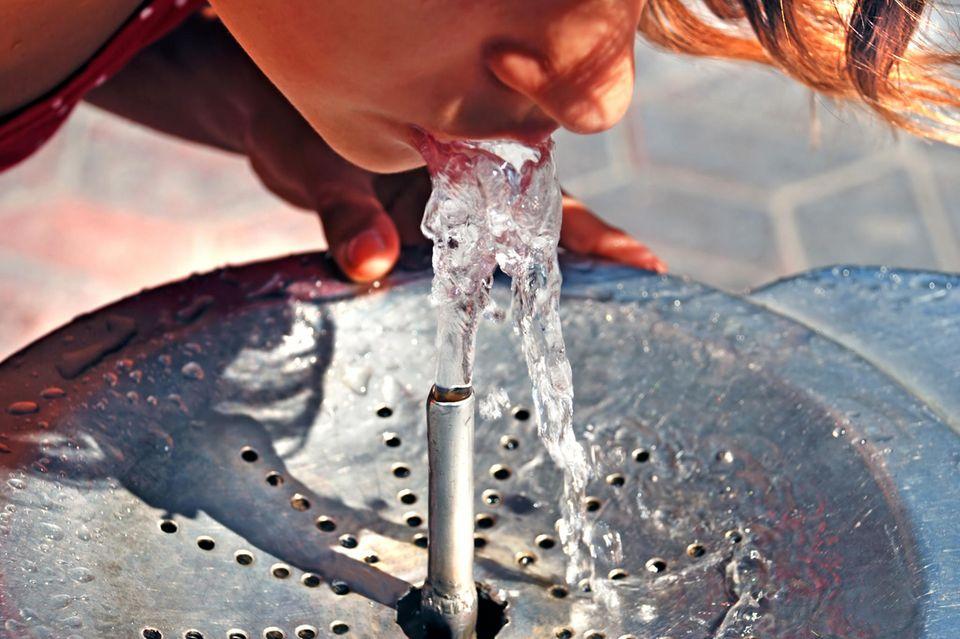 Wasser: Vor allem bei Hitze hält es den Organismus gesund