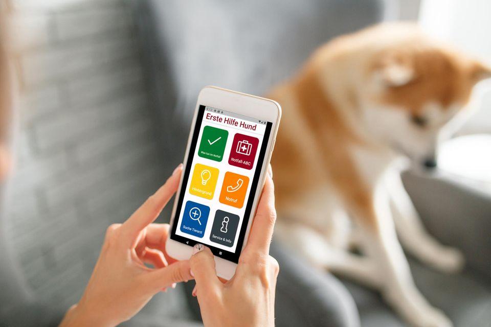 """App """"Erste Hilfe Hund"""""""