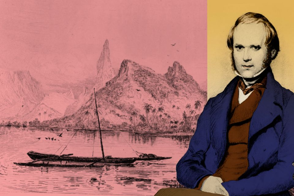 Naturforscher Charles Darwin