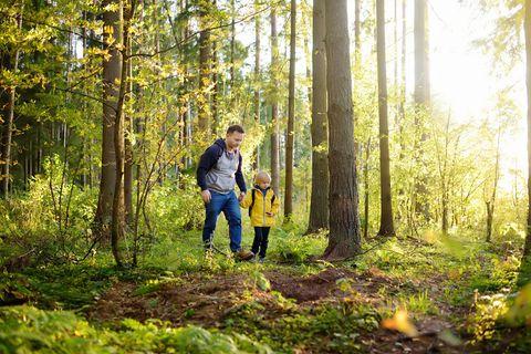 Nachhaltig leben, langfristig denken: Zum Beispiel gemeinsam mit Kindern die Natur entdecken und ihnen dieNaturliebe weitergeben