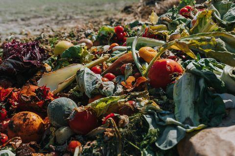 Obst und Gemüse liegen als Abfall auf einem Feld