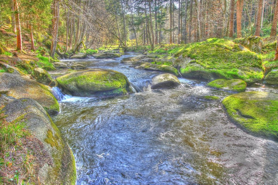 Flusslauf der Waldnaab im Waldnaabtal
