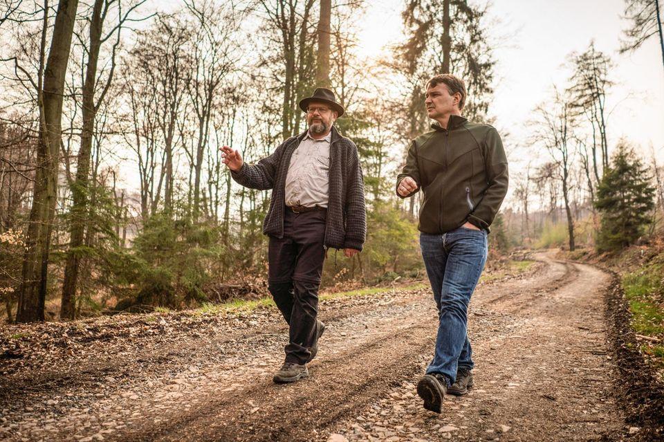 Erst Käfer, dann Kahlschlag: Pierre Ibisch und GEO-Chefredakteur Jens Schröder begutachten die Montabaurer Höhe, auf Einladung besorgter Biologen der Universität Koblenz-Landau