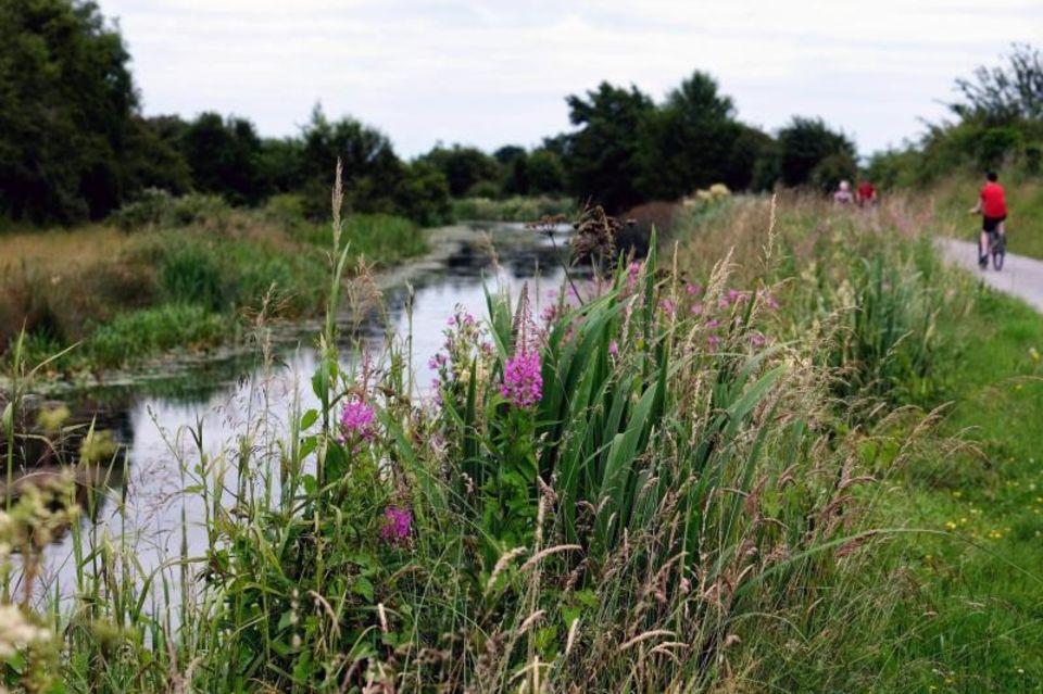 Der Royal Canal in der Nähe von Enfield