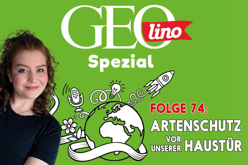 In Folge 74 unseres GEOlino-Podcasts hört ihr, wie ihr bedohten Arten vor eurer Haustür helfen könnt