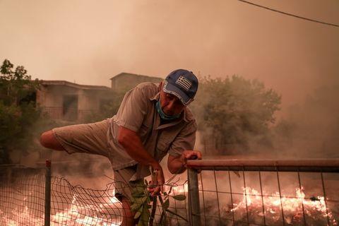 Waldbrand in Griechenland, Evia Island