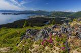 Blick auf die Küste von Kodiak Island im Sommer