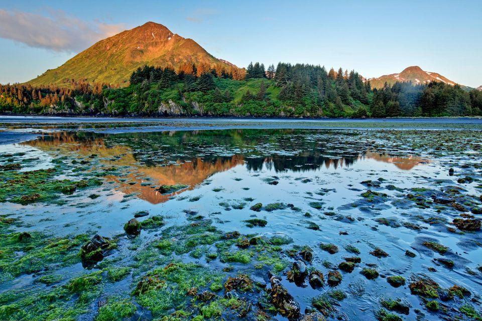 Monashka Bay auf Kodiak Island