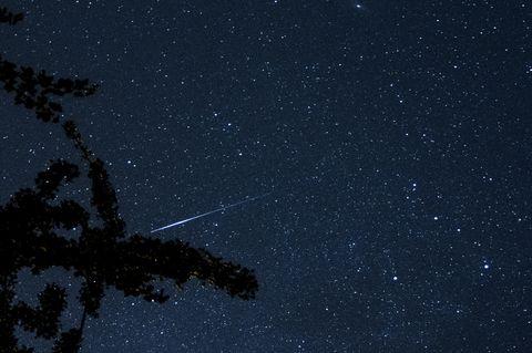 Sternschnuppe der Perseiden