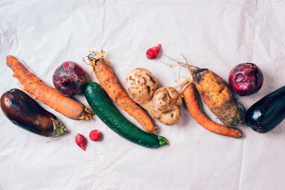 Lebensmittelverschwendung: Eine Woche nur gerettete Lebensmittel essen – ein Selbstversuch
