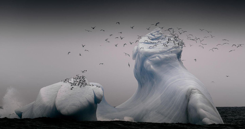CEWE Photo Award - Andreas Wolde