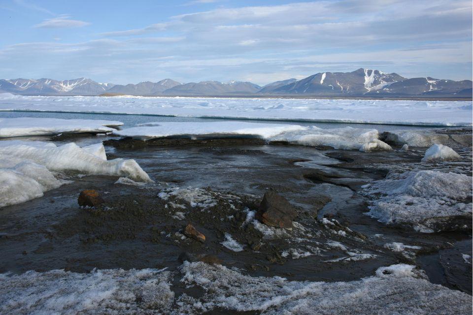 Das kleine noch unbenannte Eiland am nördlichsten Zipfel Grönlands ist möglicherweise die wohl nördlichste Insel der Welt - entdeckt wurde sie von Forschern der Universität Kopenhagen