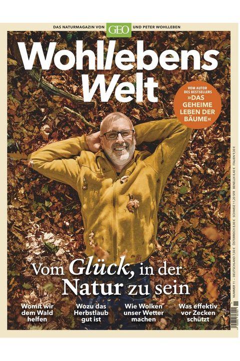 Aktuelle Magazine