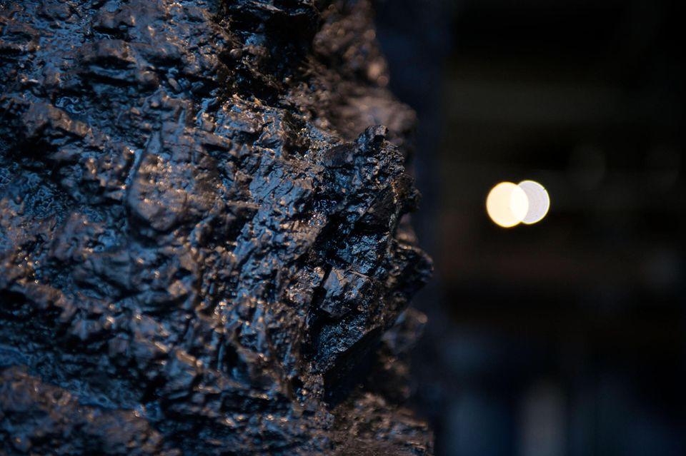 """Chemie: Das """"Schwarze Gold"""" aus der Tiefe: Steinkohle ist ein festes Sedimentgestein, das vor Urzeiten aus den Rückständen von Pflanzen entstand"""