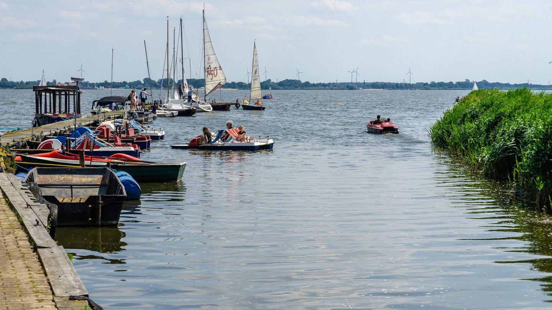 Steg mit Booten und Tretbotten am Dümmer
