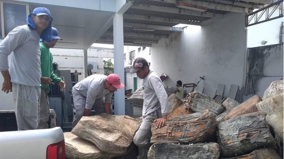Mitarbeiter der brasilianischen Staatlichen Umweltverwaltung (Adema) laden das Strandgut aus einem Wagen