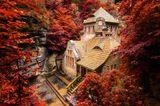 Stará Plynárna, ein altes Gaswerk, mit rot gefärbten Laubbäumen im Herbst