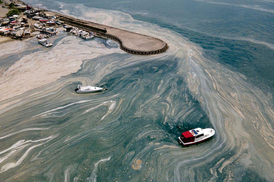 Schleim auf der Oberfläche des Marmarameers