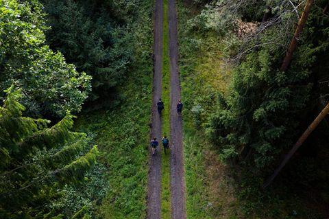 Die Göhrde ist das größte zusammenhängende Mischwaldgebiet Norddeutschlands. Hier können Sie einen besonders einmaligen Naturraum kennen lernen –z.B. bei einer Schweige-Wanderung