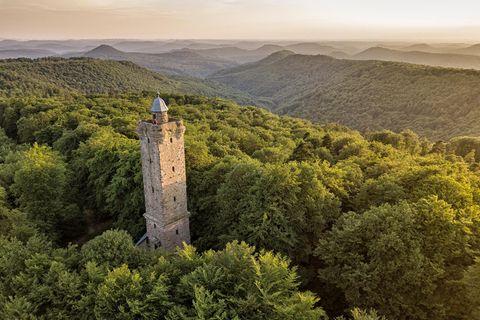 Deutschland: 33 Reisetipps für Waldbegeisterte – zum Wandern, Erleben und Genießen