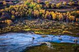 Um das Hochplateau in der Inneren Mongolei im sanften Morgenlicht fotografieren zu können, muss Weimin Qi klettern. Oben angekommen, kreiert er ein Bild mit Dreiklang. Die ziehenden Schafe, der sich ausdehnende Fluss und die bunten Wälder. Die Natur hat ihren eigenen Rhythmus.