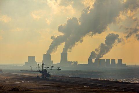 """Klimakrise: """"Es ist nicht der Mensch, der an sich zerstört. Es ist der Kapitalismus."""""""