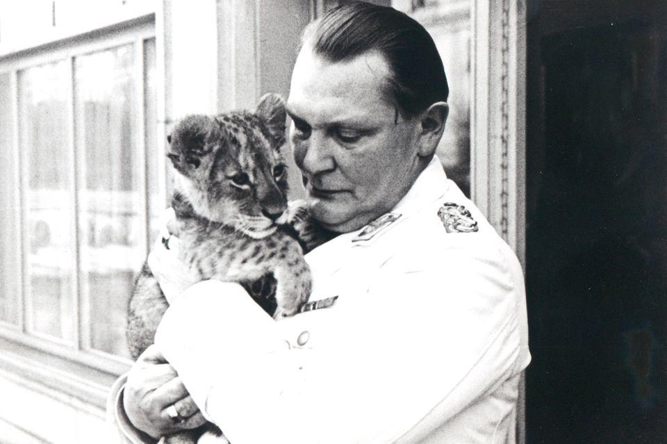 Hermann Göring zog sieben Löwen auf, hier 1938. Die Raubtiere symbolisierten wohl Macht und Geltung