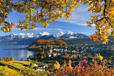Spiez am Thunersee mit Berner Alpen im Hintergrund im Herbst