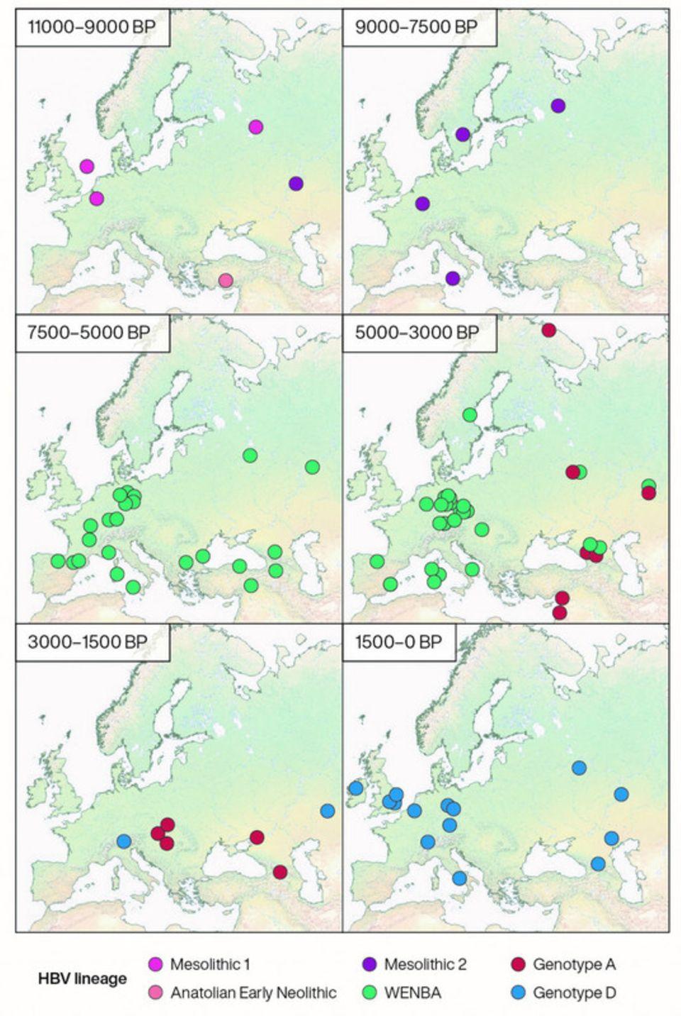 Geografische Verteilung historischer HBV-Genome in verschiedenen Zeiträumen, eingefärbt nach Abstammung