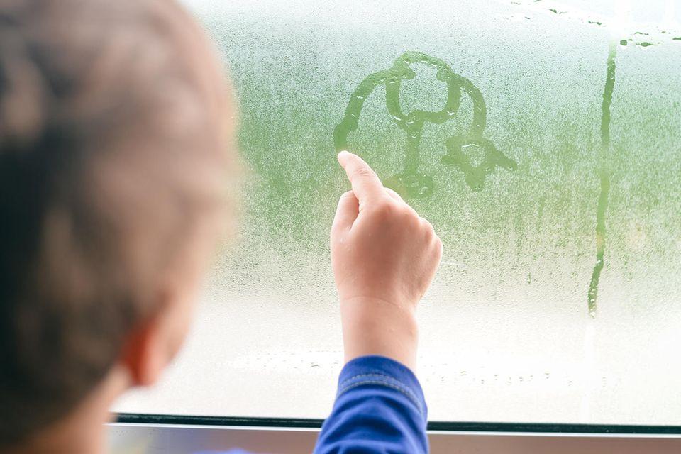 Kondenswasser an Fenstern ist oft ein Indiz für zu hohe Luftfeuchtigkeit in Innenräumen