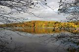 Seeufer im Herbst bei Mölln